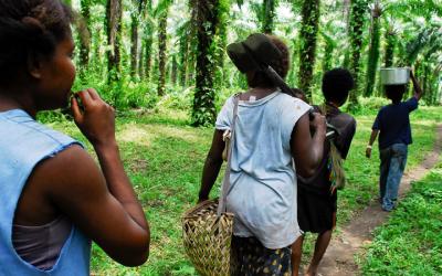 The Bride Price Tradition in Papua New Guinea