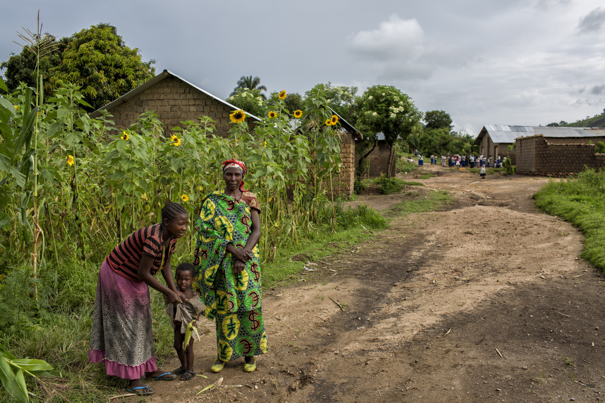 Background on Idjwi: Population - Around 250k; Average Children Per Family - 8.5; Average Daily Wage - US$0.15; Average Life Expectancy - 25 years.  Idjwi Island in Lake Kivu is a remote and neglected island in one of Africa's most turbulent regions of the Democratic Republic of Congo (DRC). It is home to an estimated 250,000 people and has garnered a reputation as a safe-haven for refugees fleeing conflict like the Rwandan genocide of 1994 and the DRC M23 rebellion of 2013.  While isolation has led to its peace, it has also led to its neglect by the broader health system in the DRC. Idjwi suffers from minimal civil infrastructure. Infectious disease is a public health problem on the island with malaria, diarrheal diseases, and neglected tropical diseases (NTDs) plaguing much of the population.