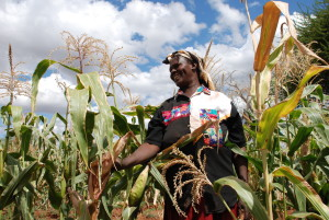 Photo credit: Anne Wangalachi/CIMMYT.