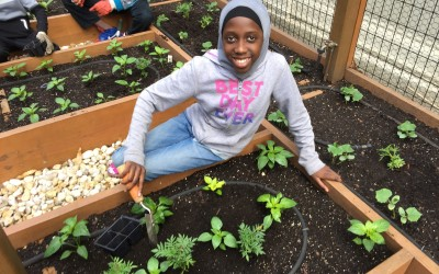 Health and Environmentalism in a Bronx Classroom