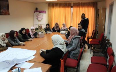 """""""Shadow Councils"""" in the West Bank ;When Gender Quotas Are Not Enough"""