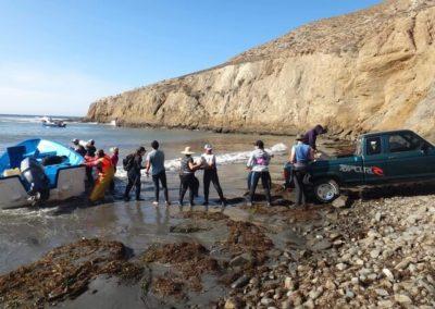 Monitoring divers from Buzos y Pescadores