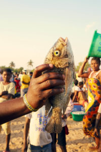 "A fisherman holds up a chambo — what locals call a type of tilapia native to Lake Malawi. Chambo is one of Malawi's most popular fish. Once it was plentiful, but now it is listed as ""critically endangered"" because of overfishing. Julia Gunther"